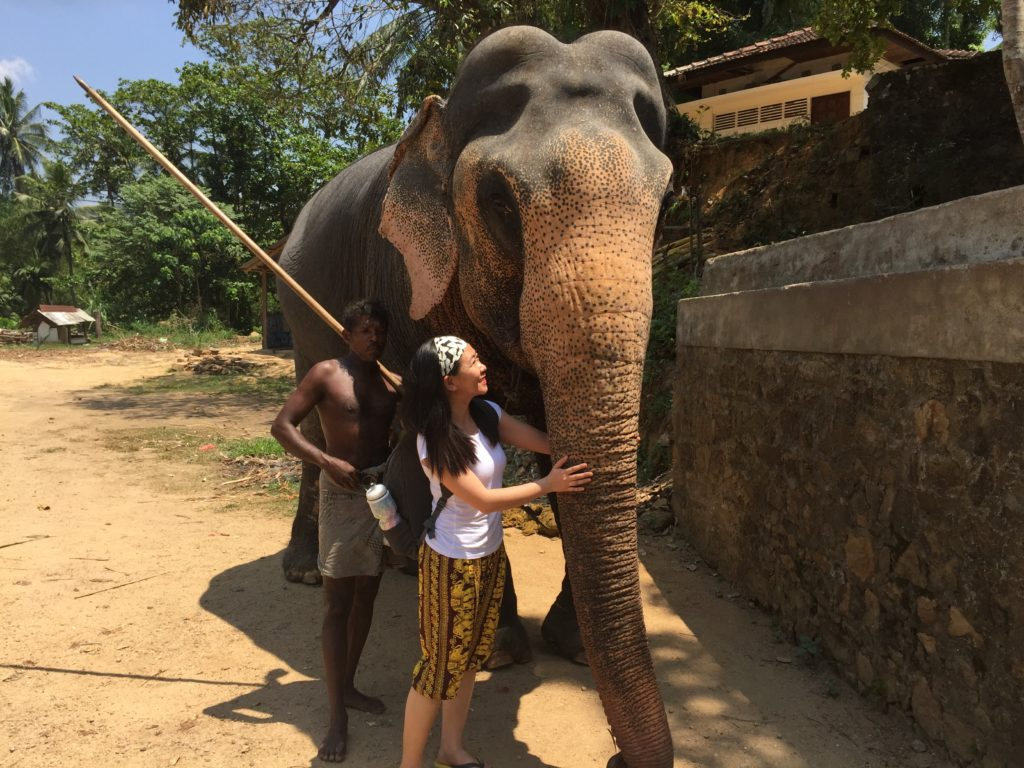 A photo with Raja and the Mahout