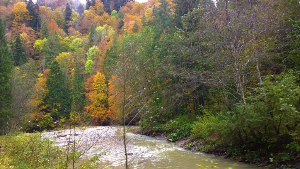 Autumn glory along Vasser River