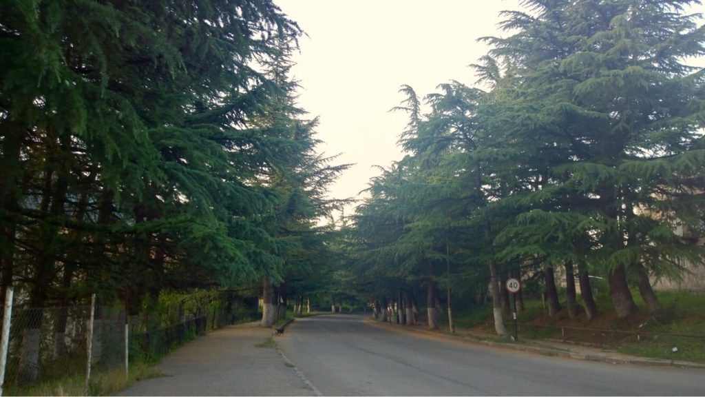 Escape from Yerevan