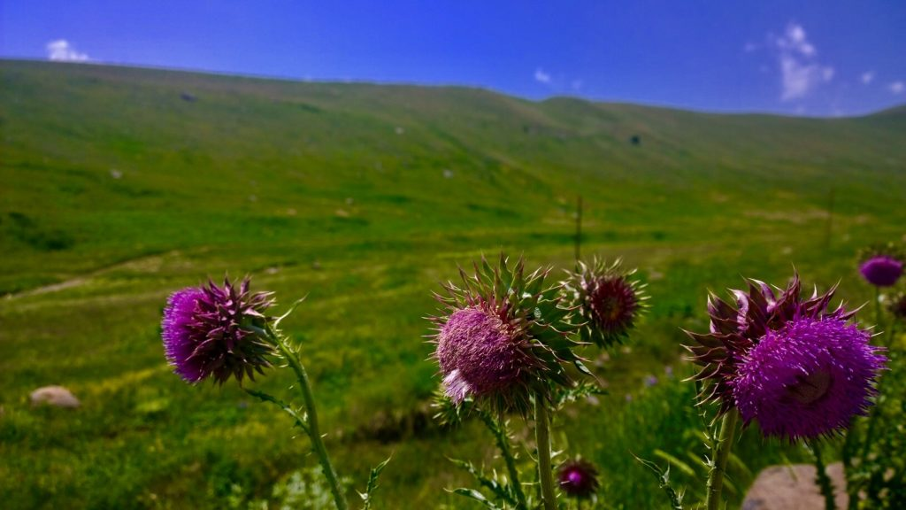 Armenia Trekking